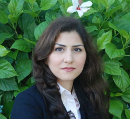 Maryam M. Shanechi